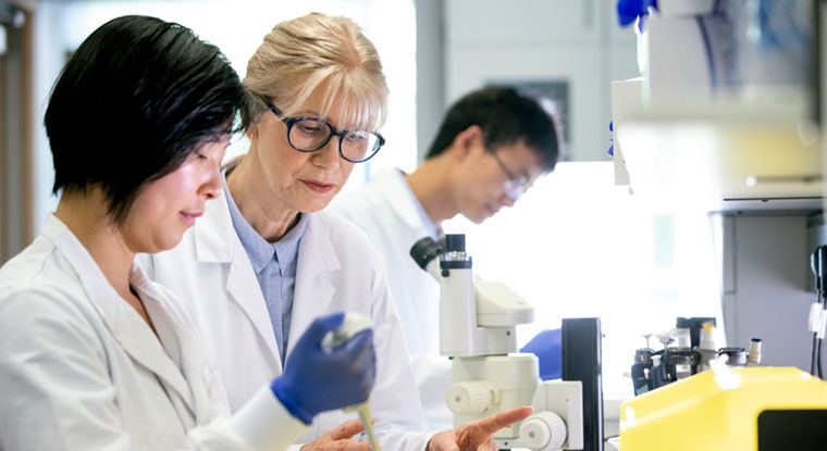 WCER experts key to $43M federal push to diversify biomedical sciences