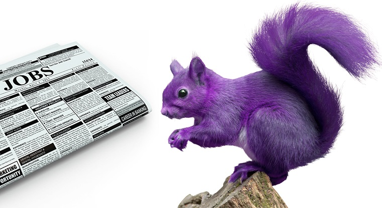 "A new study finds discouraging ""purple squirrel"" hiring practices is key to meeting Wisconsin's workforce and civic needs."